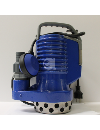 Elettropompa DR Blue 100 HP...